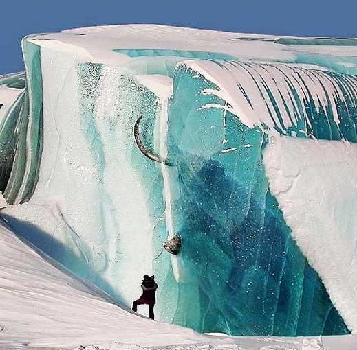 Мамонт во льду