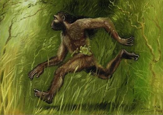 Агогве: тайна Африканских мохнатых карликов