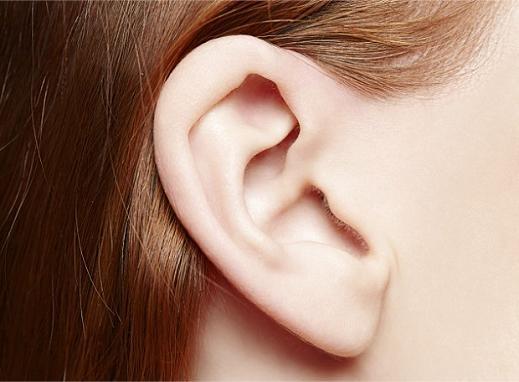 Почему ухо состоит из трёх косточек?