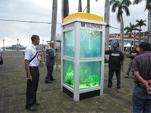 Телефонные будки-аквариумы